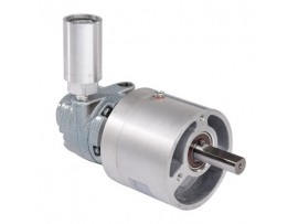 Gast Gear Air Motors 1AM-NRV-56-GR11