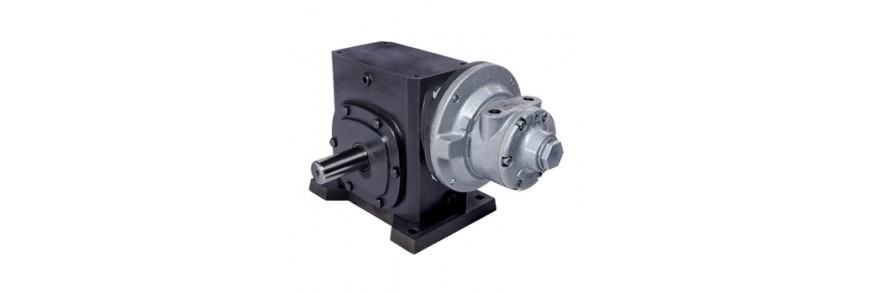 Gear Air Motors