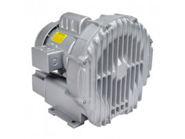 Gast Regenerative Blower R4110-2