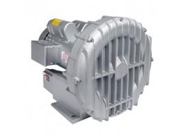 Gast Regenerative Blower R5125-2